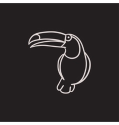 Toucan sketch icon vector image