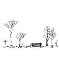 Stylized park decor bench and trees drawing vector