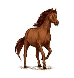Running horse sketch with brown arabian stallion vector