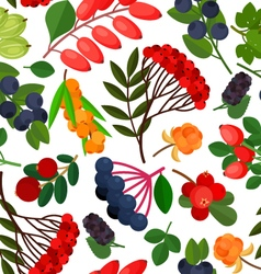 Rowan berries pattern vector