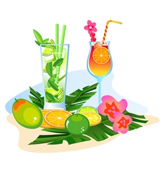 Fruit  cocktails vector