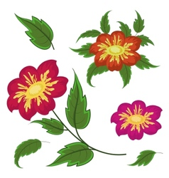 flowers and green leaves dahlia vector image vector image