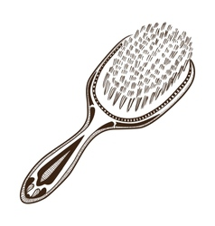 Hair brush vector image vector image