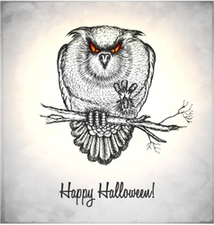 Horror owl in a sketch style vector