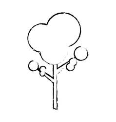 isolated natural tree vector image