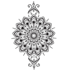 Ornament beautiful card vector
