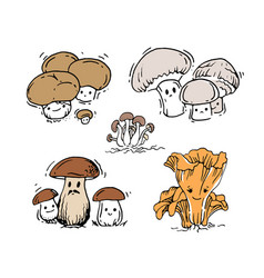 set of mushrooms vector image