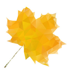 yellow maple leaf in low poly style vector image