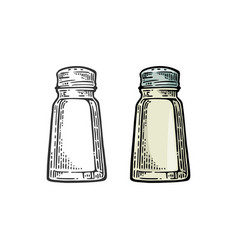 Salt shaker vintage black and color vector
