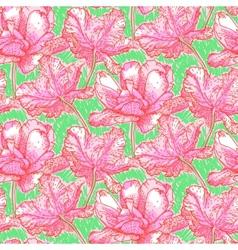 Pattern with field of bright peony flowers vector image vector image