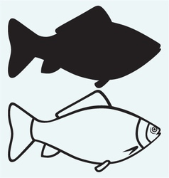 Silhouette fish vector image vector image