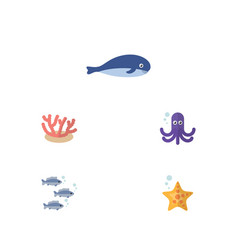 Flat icon sea set of cachalot tentacle sea star vector