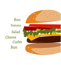 ingredients in burger on white background vector image