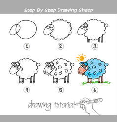 step by step drawing sheep vector image vector image
