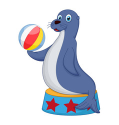 cute circus seal playing a ball vector image vector image