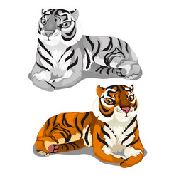White striped bengal and brown tigers vector