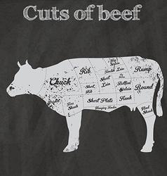 Cuts of beef design vector