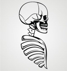Skull Draw vector image vector image