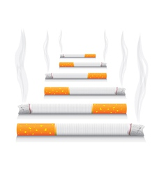 Smoking cigarettes vector