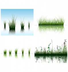 grass on water vector image