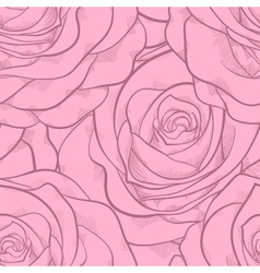 seamless pattern in pink roses with contours vector image