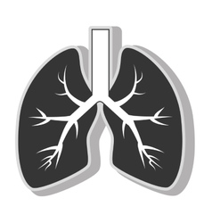 Lung organ health vector