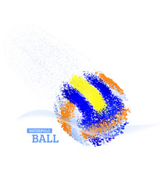 Water polo ball vector image