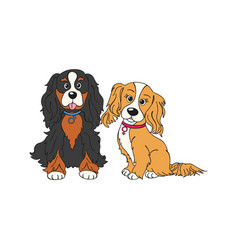 Cavalier king charles spaniel dog breed vintage vector