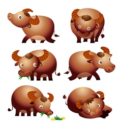 cute buffalo cartoon vector image vector image