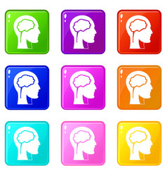 head with brain icons 9 set vector image