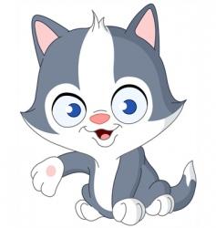 kitten presenting vector image