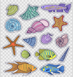 colorful shells and fishes vector image