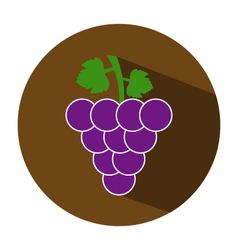 icon grape vector image vector image