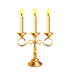 candlestick isolated vector image vector image
