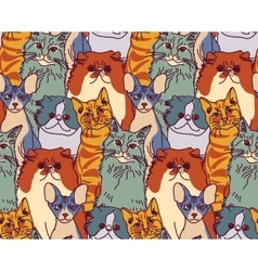 Cats pets animal group color seamless pattern vector image