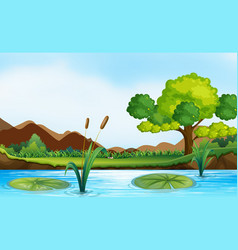 Scene with river and park vector