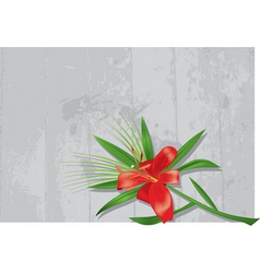 lily on a grey background vector image