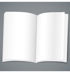 Empty brochure design template vector image