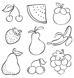 hand draw fruit various style doodles vector image