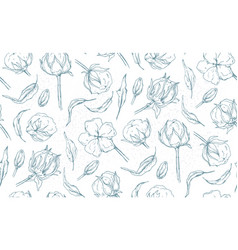 Seamless pattern with cotton ball flowers leaves vector