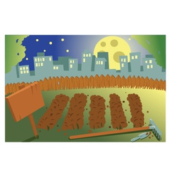 Vegetable garden by night vector image vector image
