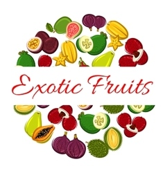 Exotic fruit circle poster for healthy food design vector