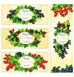 Berry banner set with fruit and leaf frames vector image