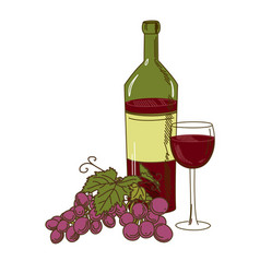 bottle of wine grapes and a glass vector image