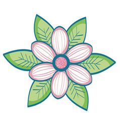Flower and leaves design vector