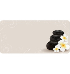 Spa swirl background vector image