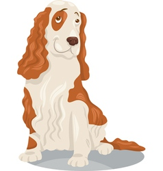 Cocker spaniel dog cartoon vector