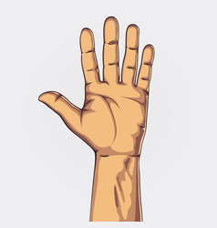 hand showing five count vector image vector image