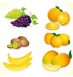Tropic fruits vector