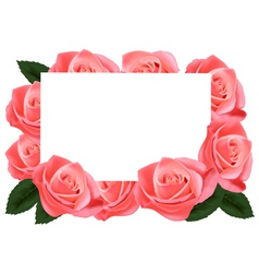 Pink roses and paper card vector
